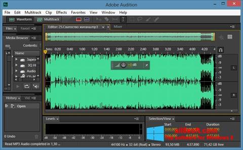 Petikan skrin Adobe Audition CC untuk Windows 8