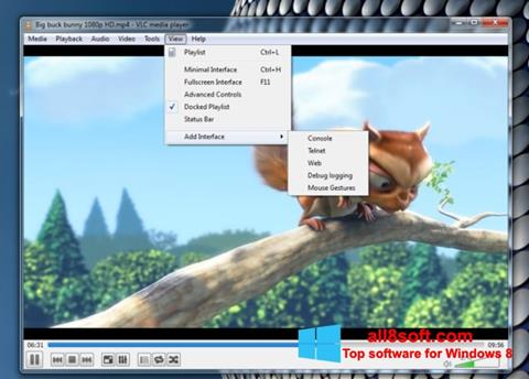 Petikan skrin VLC Media Player untuk Windows 8